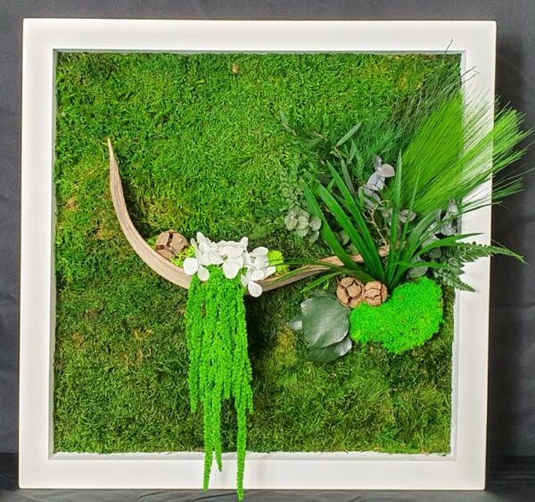 tableau vegetal coco 1