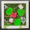 tableau Dendrobium