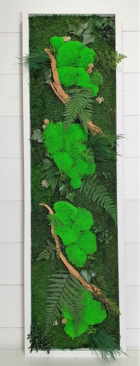 Tableau Végétal Moos forest 140x40 cm 2