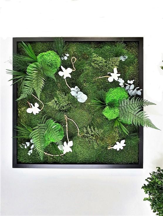 Tableau Végétal Jardin d'Endrobium